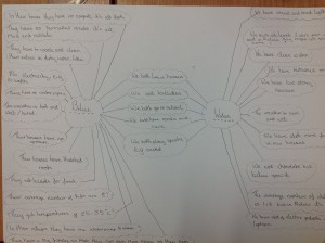 Y7 Double Bubble Map